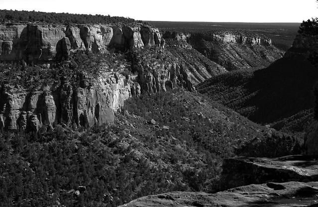 mesa verde cliff bw