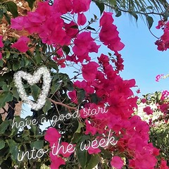 Guten Start in die Woche :ok_hand::two_hearts: Have a good start into the week :blue_heart::thumbsup: Comienza bien la semana #mondaymorning