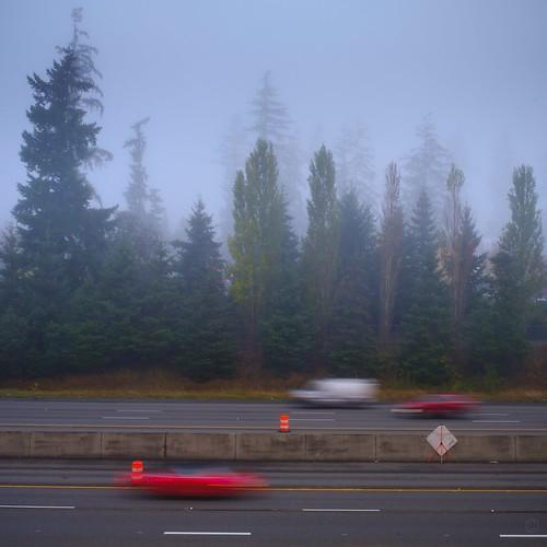 276/365 : Misty morning commute