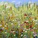 Meadow by John Thompson