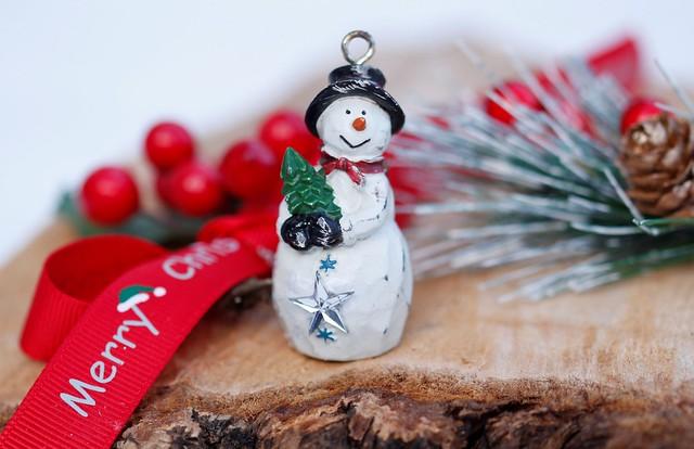 Little Snowman, Canon EOS REBEL T1I, Sigma 105mm f/2.8 EX DG OS HSM Macro