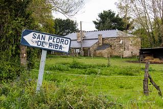 Camino Primitivo Etapa 10