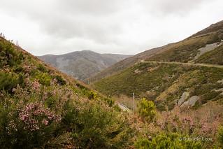 Camino Primitivo Etapa 5