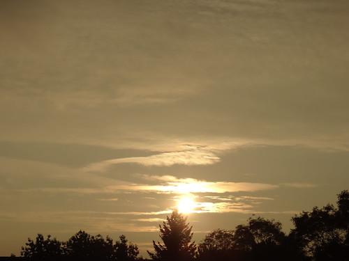 Sonnenaufgang aus Tau und Tag, perlender Tau so silbern schimmert, tausend Düfte wachen auf wenn Mond und Sonne am Morgenhimmel sich berühren 02482